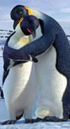 הפינגווין ממשיך לתופף בפסגה