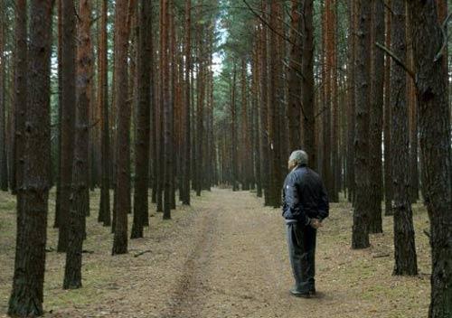 הקולנוע ככלי פולחן – אחרון הלא צדיקים