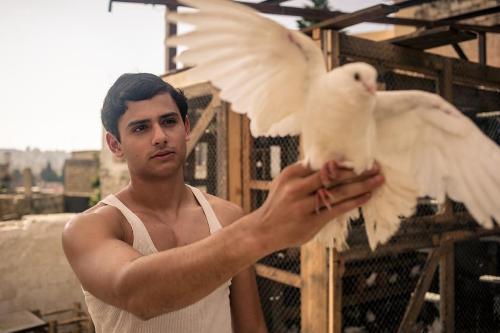 סיכום שנה בקולנוע הישראלי – המספרים