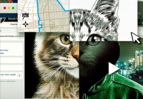 אל תתעסקו עם חתולים: ביקורת סדרה