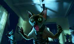 Loading Cats & Dogs Pics 3 -  תמונה מספר 3 מהסרט כלבים נגד חתולים ...