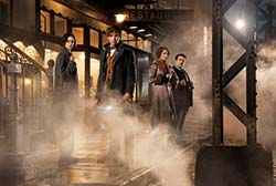 Loading Fantastic Beasts and Where to Find Them Pics 5 -  תמונה מספר 5 מהסרט חיות הפלא והיכן למצוא אותן ...