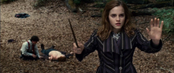 Loading Harry Potter and the Deathly Hallows 1 Pics 3 -  תמונה מספר 3 מהסרט הארי פוטר ואוצרות המוות חלק 1 ...