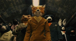 Loading Fantastic Mr. Fox Pics 2 -  תמונה מספר 2 מהסרט Fantastic Mr. Fox ...