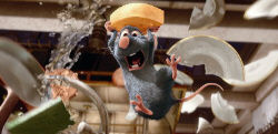 Loading Ratatouille Pics 1 -  ����� ���� 1 ����� ����� ...